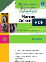 Expo Marcas Colectivas