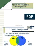 Credit & Receivables Risk Mgmt