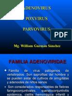 Adenovirus Poxvirus y Parvovirus[1]