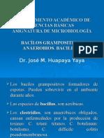 Bacílos Grampositivos Aerobios y Anerobios