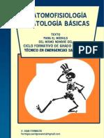 fichasanatomofisiologia-101128095946-phpapp01