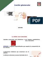 3. Función Renal-Filtración glomerular