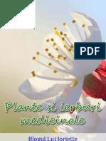 Plante Si Ierburi Medic in Ale