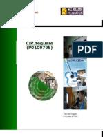060623 Segundo Informe CIP Yeguare HI
