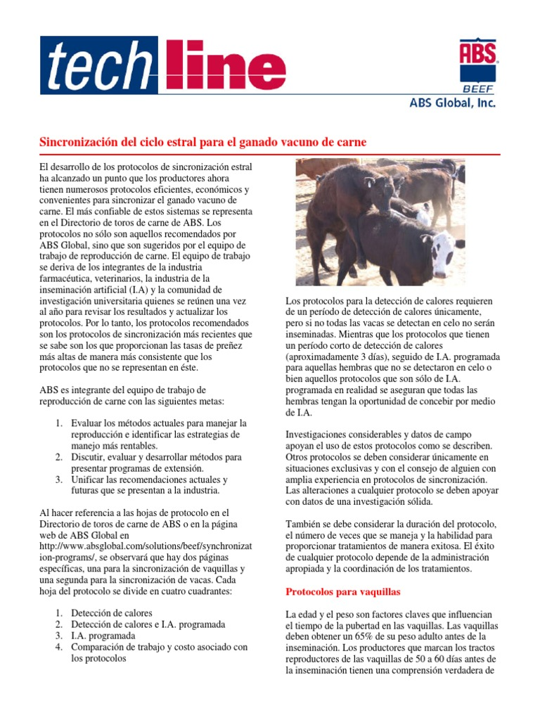 Beef Synch Techline 43059 SP