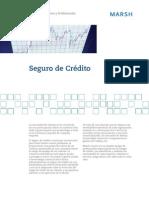 FICHA_12_SEGURO_CREDITO