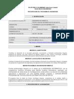 Presentacion Fundamentos de Programacion 1 2008-1