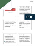 aula_7_sensibilidade_somatica_2