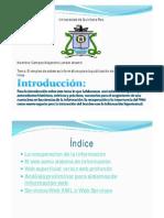 Campos Alejandro Lander-Internet