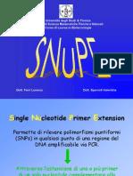 lezione SNuPE 1