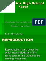 Reproduction Payal G