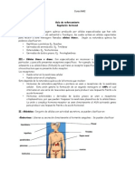 guia sistema endocrino
