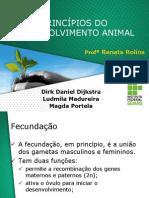 PRINCÍPIOS DO DESENVOLVIMENTO ANIMAL