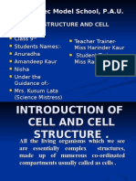 Cell Structure 3 Pau Ldh