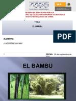 BAMBU-Ag-FN