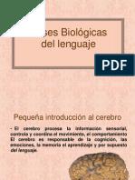 Bases Biológicas del lenguaje