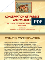 Conservation of Forest and Wildlife_verka(b)_amritsar