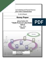 MPLS Essay Paper