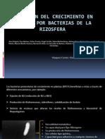 presentacion de microbiologia