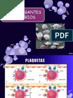 expoantiagregantesplaquetarios-110212121242-phpapp01
