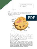 Remidi Kd IV Biosel