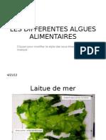 Les Differentes Algues Alimentaires