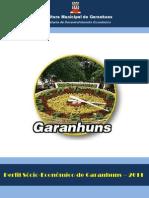 Perfil Socio-Econômico de Garanhuns 2011
