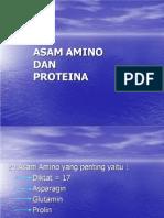 Asam Amino Dan Proteina