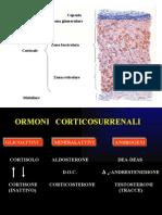 CORSO DI PEDIATRIA Terapia Cortisolo