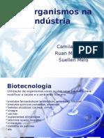Microrganismos Na Industria Slides 2003