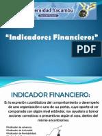 Indicadores Finacieros