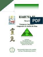 João Eduardo Fialho - KARUNA KI - Nìvel 2_PDF
