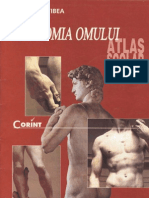 Anatomia omului