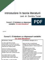 teoria literaturii
