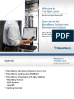 Overview of the Blackberry Solution and Development Options