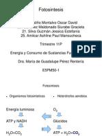 E5-PM50-1