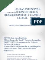 AGRICULTURAS INTENSIVAS, ALTERACIÓN DE CICLOS BIOGEOQUIMICOS