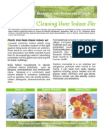 Plants Can Help Clean Indoor Air