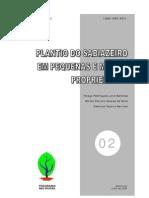 02 Plantio do Sabiazeiro