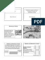 Membrana Celular e Transporte - Prof Mauro 2