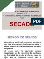 Secadoy Control Plagas 2 (1)