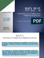 Rflp's