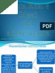 Dieta Real e Ideal del Adolescente