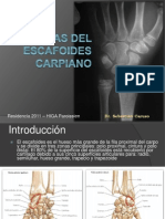 Fracturas Del Escafoides Carpiano