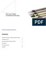 Ch en Capital Contribution Principle Final