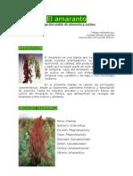 El amaranto. una opción viable de cultivo