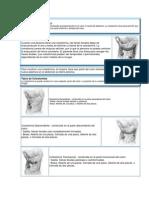 Colostomía e ileostomia