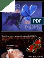 Rama-Rama Dan Bunga - Hikmah Kejadian Oleh Tuhan