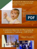 Apresenta Programa Permanente Prevencao Acidentes e Violencia Al