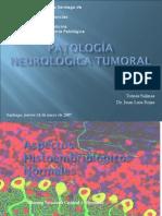Neuropatología Tumoral